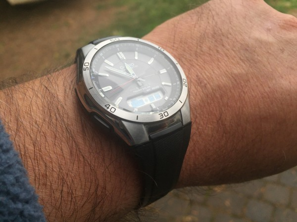 A garden variety photo of watch on a wrist.