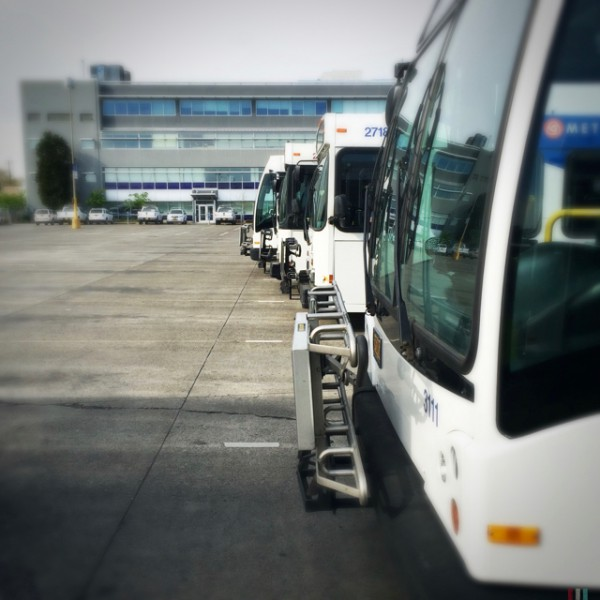 Buses in the yard