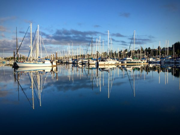 Day 1 Morning at Squalicum Harbor in Bellingham.